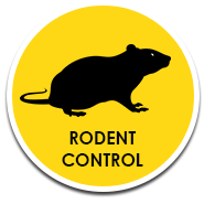 Buzz Bees Rodent Control